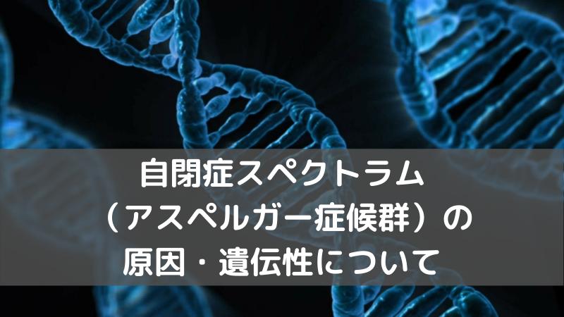 自閉症スペクトラム(アスペルガー症候群)の原因は?遺伝性はどれくらいあるのか?【医師が分かりやすく解説】