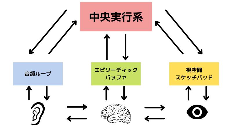 ワーキングメモリーの心理モデル図